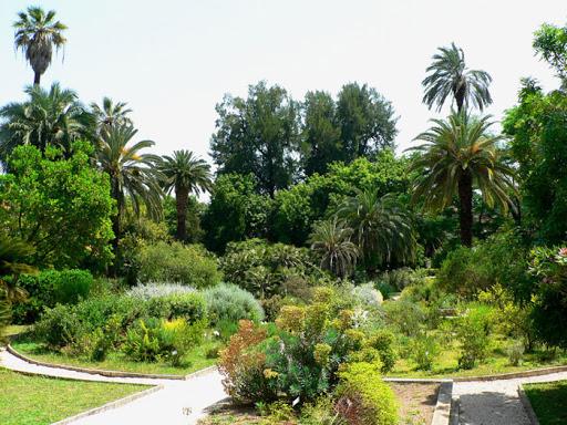 Museo Orto Botanico di Roma